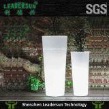 결혼식 훈장 LED 화분 Ldx-F02 LED 가벼운 가구 LED 점화 LED 전구
