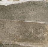 Sandy-Land-Porzellan-Fußboden-Wand-Fliese (LT6606)