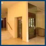 Elevatore domestico dei piccoli elevatori dell'elevatore della villa dell'azionamento di Deeoo Vvvf mini