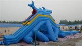 Opblaasbare Dia voor De Spelen van het Pretpark