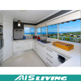 Gabinetes de cozinha Home do armazenamento da mobília (AIS-K228)