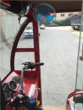 Passengerのための安いClosed Motor Tricycle Bajaj Gasoline Three Wheel Trike Tricycle