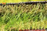 Трава ландшафта 4 цветов искусственная от китайской фабрики