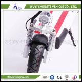 2016良質の熱い販売600Wの電気スクーター