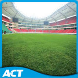 Het PRO Synthetische Gras van de Voetbal, Kunstmatig Gras