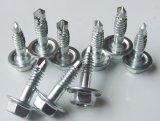 Vis Drilling d'individu (NORME d'ANSI/ASME/DIN/ISO/JIS)
