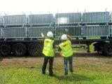 浸る熱いのイギリスのタイプ様式の金属の農場のゲート終了する電流を通される