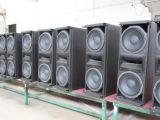 두 배 10 인치 Compective 직업적인 오디오 (CA0010)