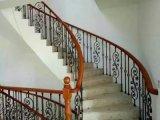 Разнообразные типы европейского поручня лестницы ковки чугуна типа