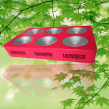 Indoor High Power COB LED Grow Light Completo Spectrum Plant LED para crescimento de plantas
