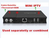 충격 텔레비젼 Box Support DVB-C/DVB-S/DVB-T/ISDB-T와 Mini IPTV
