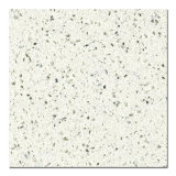 Marbre blanc Couleur Big Slab (QG101)