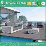 Sofà stabilito del rattan del sofà del sofà di alta qualità del sofà moderno di vimini esterno stabilito del giardino impostato (stile magico)