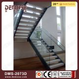Portable de cristal Barandilla de madera de acero Escaleras (DMS-2073)