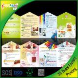 Personalizados de alta calidad Offset impresión a todo color y folletos Folleto