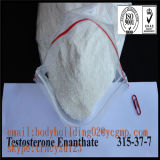 Injizierbares Anabolic Steroids Testosteron Enanthate 250mg/Ml CAS 315-37-7