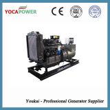 generatore di potenza di motore diesel di 30kw Ricardo