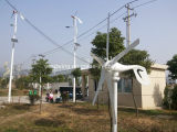 turbine horizontale d'énergie éolienne de l'axe 600W (100W-20kw)