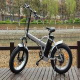 脂肪質のタイヤの電気自転車(RSEB-507)を折る20inch