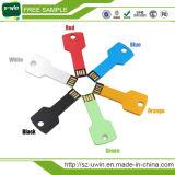 CER/RoHS Soemschlüssel-USB-Blitz-Laufwerk für Förderung