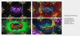 Fish Hunter電光戦争モンスターの復讐のドラゴン王のアーケード・ゲーム機械