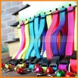 12 Farbe personifizierte justierbare bunte Regenbogen-Bell-Haustier-Hundekatze-Krägen