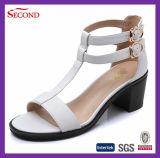 Fournisseur professionnel pour chaussures féminines