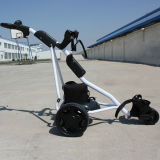 CE Approved Electric Three-Wheel Golf Trolley для Sale (DG12150-B)