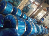 Colled Rolled Stainless Steel Strip (410S)