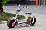Grand scooter électrique neuf de la roue 800W Citycoco