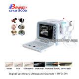 De veterinaire Dierlijke Scanner van de Ultrasone klank Insturment