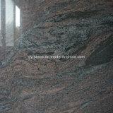 Plak van de Steen van het Graniet van de invoer de Veelkleurige Purpere voor Tegel /Countertops