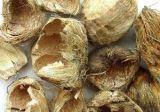 Polvo natural del extracto del 100% Pericarpium Arecae