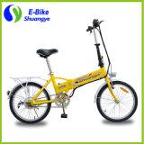 Vélo électrique de vente chaud Ebike du mini pliage 36V avec du ce En15194