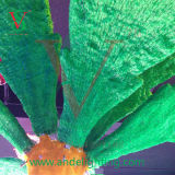 Het LEIDENE Lichte LEIDENE van de Kokospalm Licht van de Palm