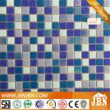 Nixe, Delphin, blüht Swimmingpool-Glasmosaik (H420089)