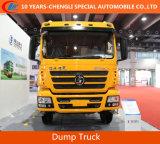 Shacman 6X4 Camion à benne basculante 290HP Camion benne