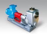 De elektrische Pomp van de Instructie van het Roestvrij staal Horizontale Chemische Zelf