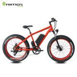 Unteres Preis-Heimlichkeit-Bomber-elektrisches Fahrrad-fetter Gummireifen-Schnee Ebike