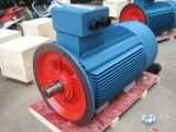 Three Phase Motor for Single Stage Vacuum Pump Y Y2