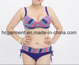 性の女性の大きいサイズのビキニ、とサイズの二つの部分から成った水着