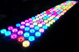 La fuente del fieltro de la lámpara del LED para los acontecimientos de los muebles que se encienden bajo el vector enciende las lámparas