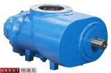Bomba del extremo del aire de los rotores del compresor de aire del tornillo dos