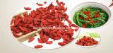 有機性Goji Berries (350grains/50g)