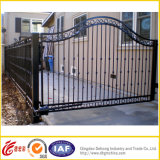 Porta do ferro/porta do metal/porta de aço/porta decorativa/porta contínua/porta contra-roubo