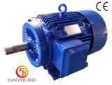 Motore elettrico di alta efficienza (blocco per grafici del ghisa, 1HP-270HP)