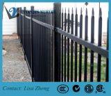 Cerca de aço decorativa do ferro de /Wrough da cerca do montagem