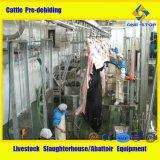 Equipamento de matadouros de gado Equipamento de abate de gado