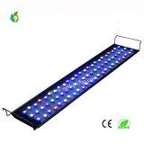 Alba di vendita 36*3W WiFi ed indicatore luminoso caldi dell'acquario di tramonto LED dal mestiere esclusivo dal fornitore della Cina