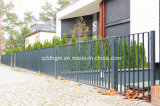 El nuevo jardín decorativo forjó la puerta del metal